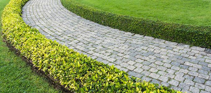 Zdjęcie pięknej ścieżki z bruku otoczonej zielonym płotkiem