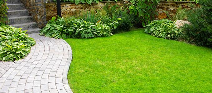 Zdjęcie pięknego ogrodu z murkiem w tle