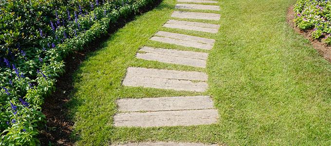 Zdjęcie ścieżki w ogrodzie